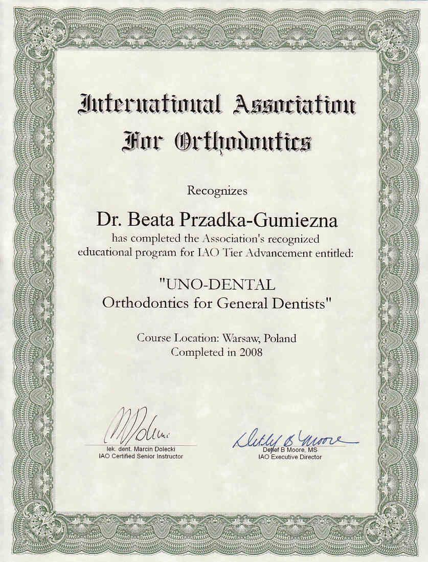 certyfikat-11-b